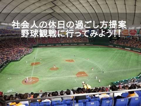 暇な休日の過ごし方の提案:野球観戦は独り身サラリーマンの味方だ!!